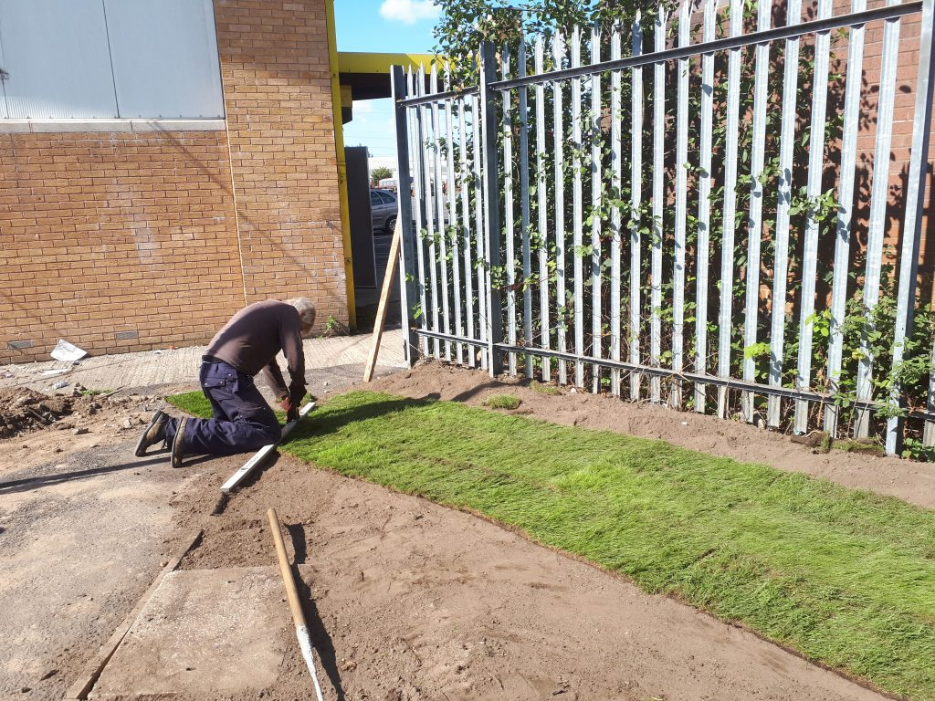 Turf being laid by Ed Tatham in the new garden